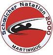 NATATION 2000.jpg