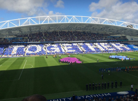 Chauffeur and Executive Car Services to Brighton & Hove Albion FC matches, home at the AMEX stad