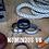 Thumbnail: Ti Numinous V6 ring