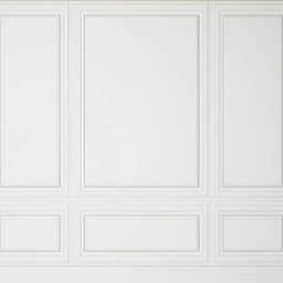 White Wall with Rectangle mouldings