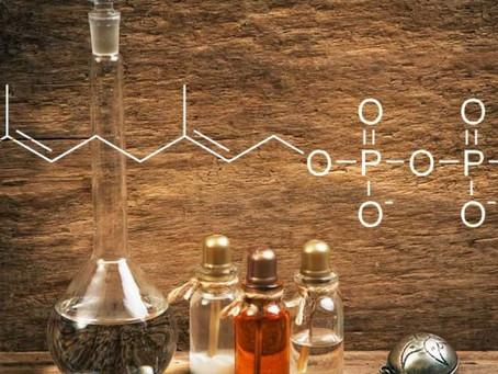 Módulo 7 - Química de los aceites