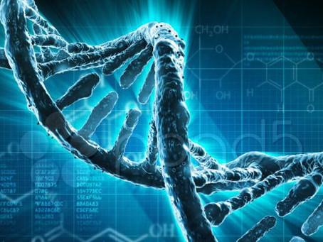 El ADN Biológico y Energético