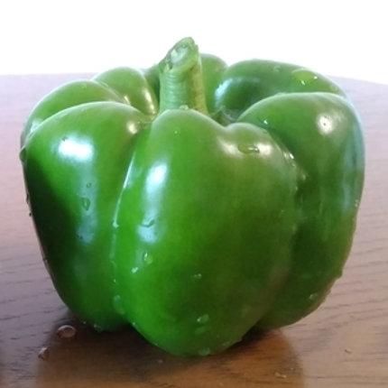 Green Pepper 1pc