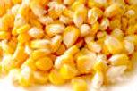 Sweet Corn 200g (/pkt)