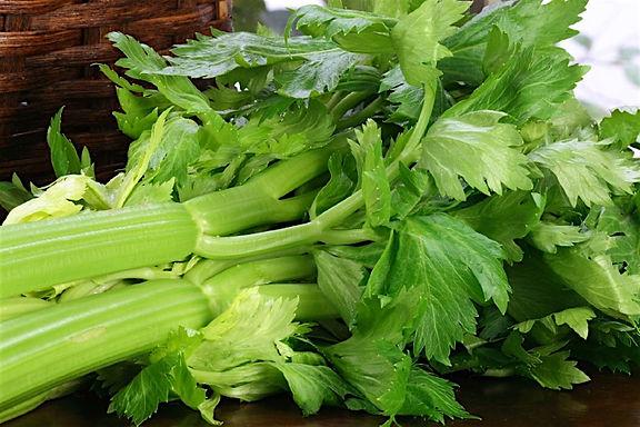 Celery 100g
