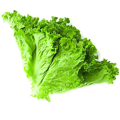 Green lettuse  100gm