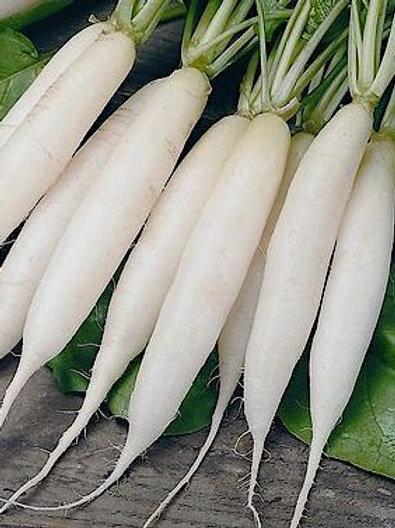 Himachal radish  500gm