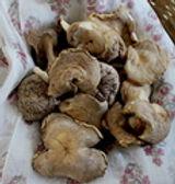 Dried Shiitake Mushroom /50g