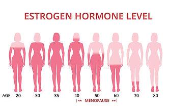bigstock-Estrogen-Hormone-Levels-Chart-2
