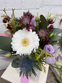 arrangement in box