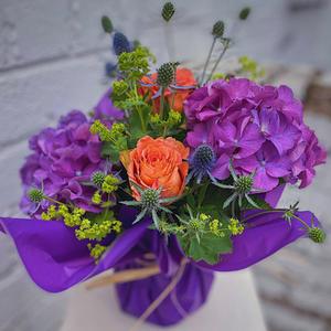 Purpleandorangecello