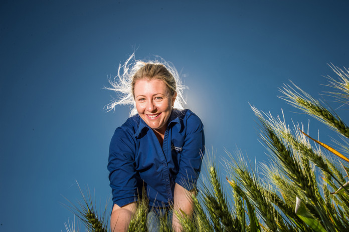 Dr Felicity Harris NSW Department of Primary Industries crop physiologist Dr Felicity Harris, who is based at the Wagga Wagga Agricultural Institute, runs several GRDC  research projects. Photo by Nicole Baxter for the GRDC
