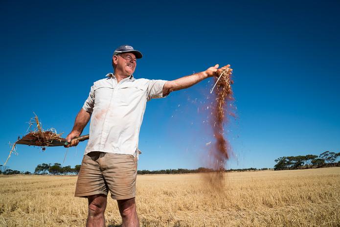 Western grains grower Photo by Evan Collis