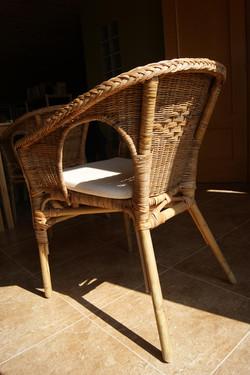 rota y bambú