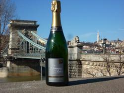 Le Pont aux Chaines à Budapest