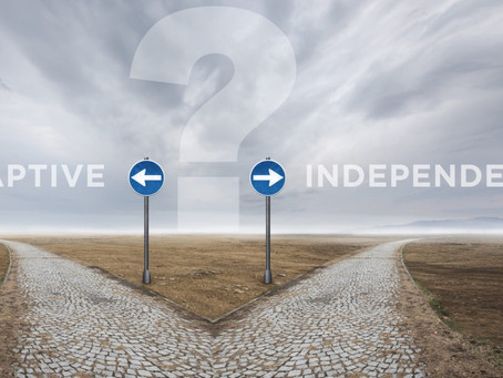 Captive vs. Independent Insurance Agents - The Pro's and Con's of Both