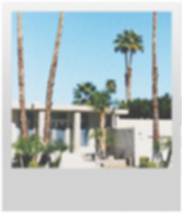 palm-desert-realestate.png