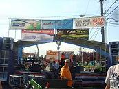 McKinley Hill Street Fair.jpg