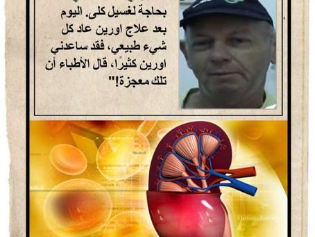 ערבית - כליות