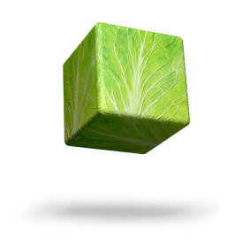 CUBE 1.2.png