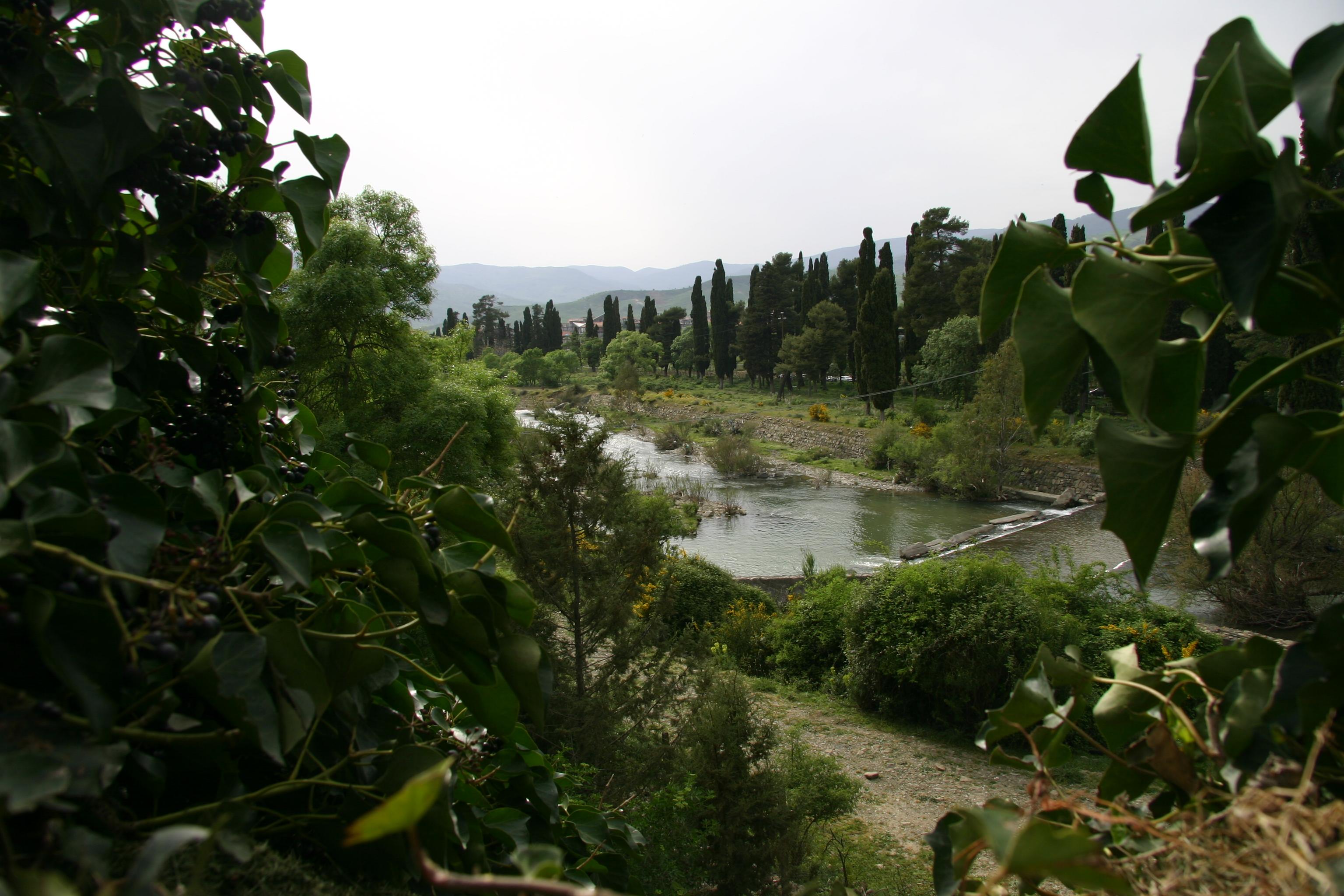 The river Simeto