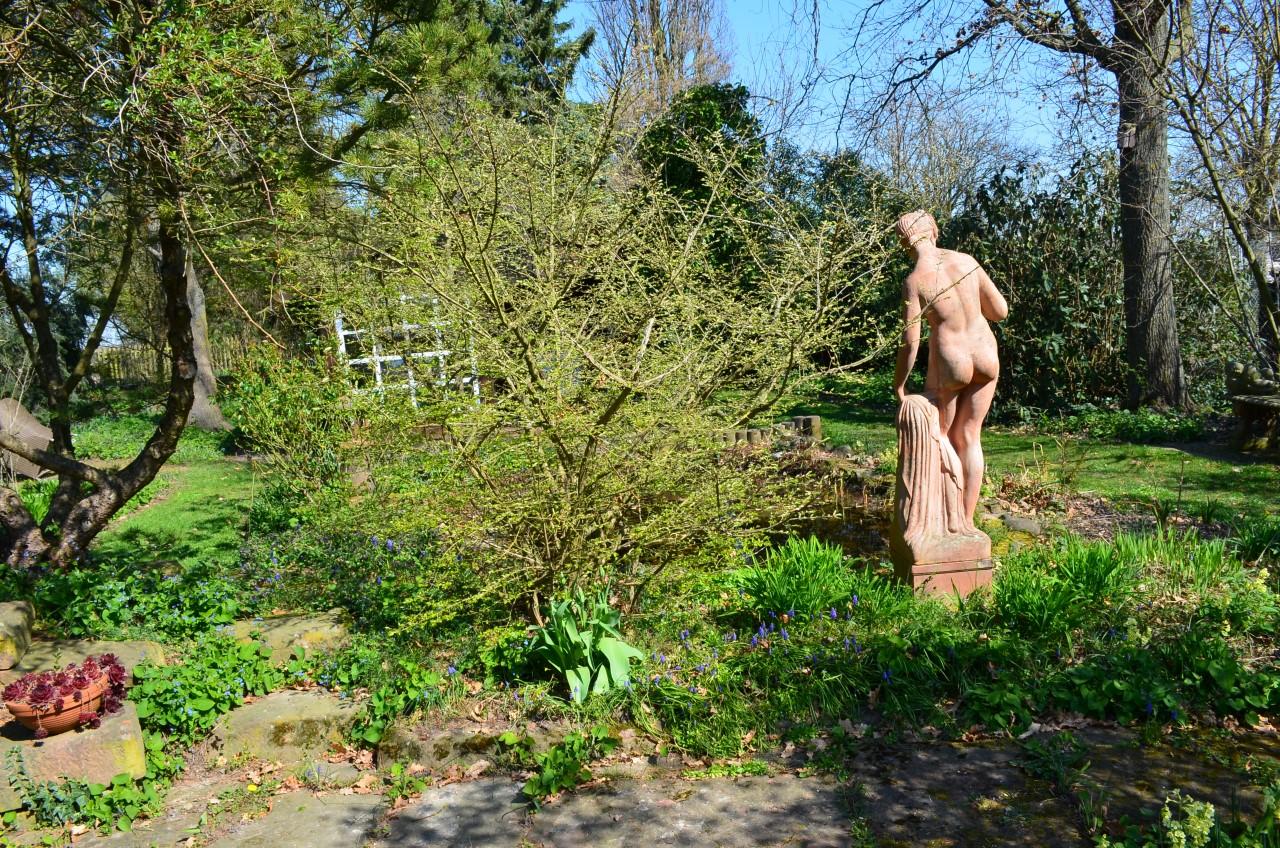 VK-1412 Gartenbereich (6)