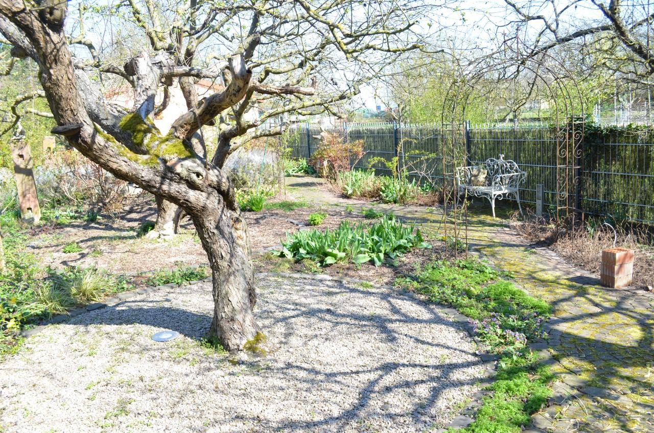 VK-1412 Gartenbereich (11)