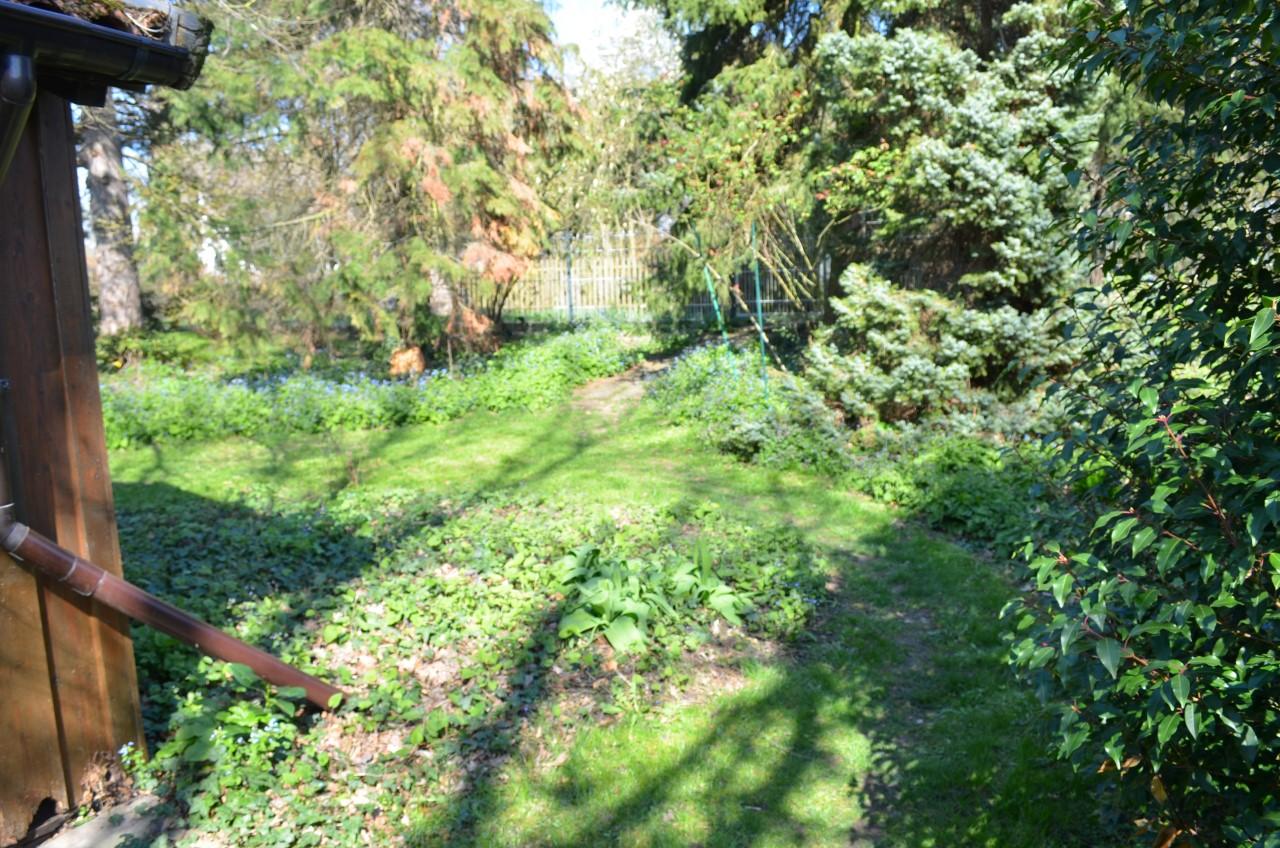 VK-1412 Gartenbereich (68)