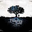 MOONSHINE-SO LONG.png