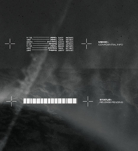 PJD-REEBOK ZIG-ARTWORK-10.jpg