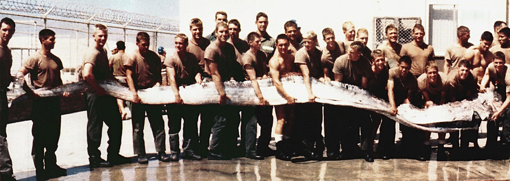 United States servicemen holding a 23-foot (7.0 m) giant oarfish, found washed up on the shore near San Diego, California, in September 1996 (Wikipedia)