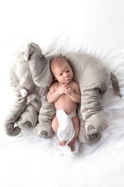 Babyshooting Babyfotografie Babyfotos Worms