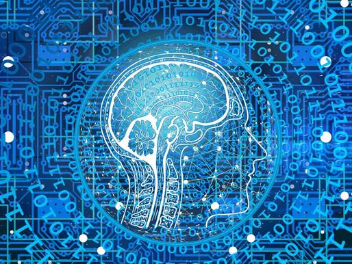 «Educar en Red: Alfabetización Digital y Sentido del Aula Virtual»