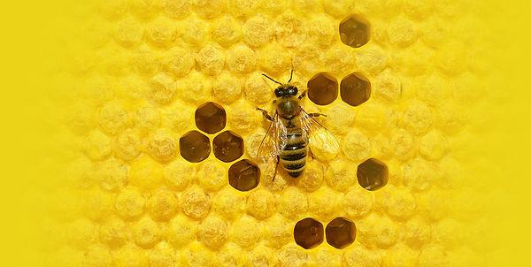 beehive S.jpg