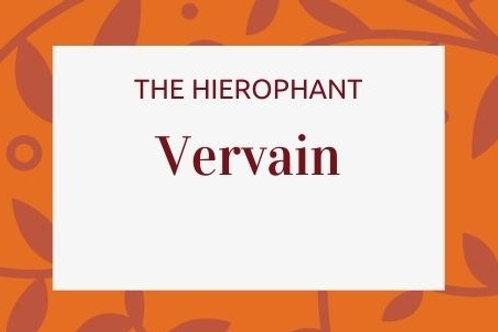 Vervain -Verbena