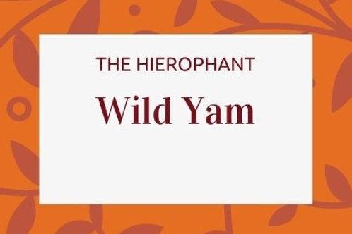 Wild Yam - Dioscorea villosa