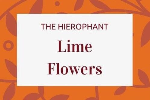 Lime Flowers - Citrus aurantifolia