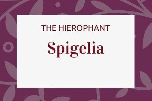 Spigelia Anthelmia