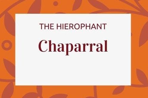 Chaparral - Larrea tridentata