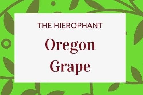 Oregon Grape (Berberis Aquifolium)