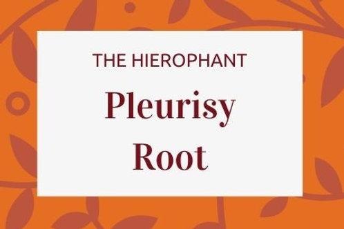 Pleurisy Root - Asclepias tuberosa