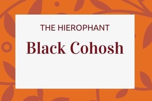 Black Cohosh - Actaea racemosa