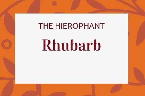 Rhubarb - Rheum rhabarbarum