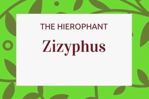 Zizyphus