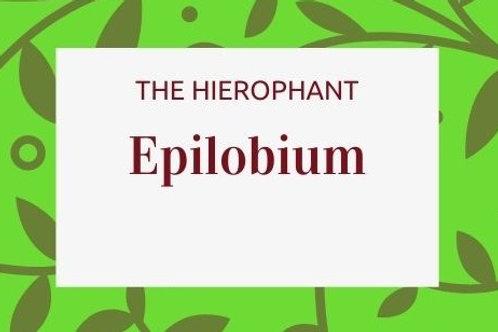 Epilobium (Willor Herb)