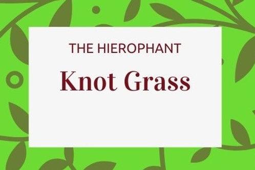 Knot Grass