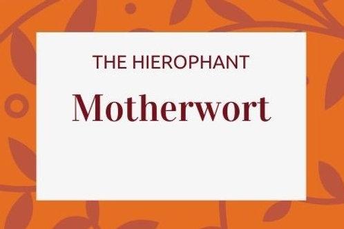 Motherwort - Leonurus cardiaca
