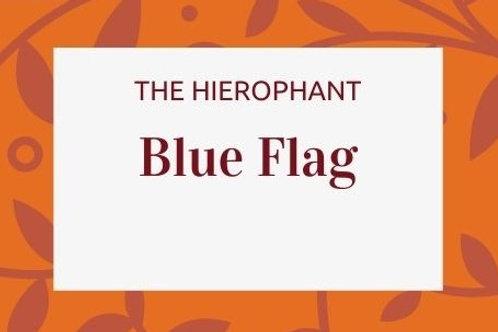 Blue Flag - Iris versicolor