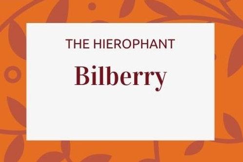 Bilberry -