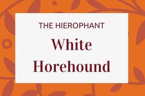 White Horehound - Marrubium vulgare